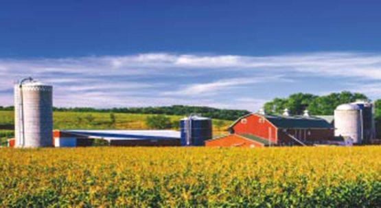 Dear Family Farm: Thank You Image